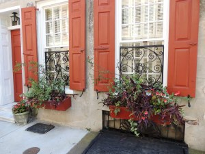 Some of the window treatments and planters in Charleston