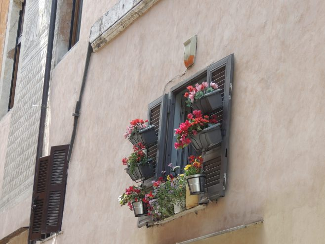 Flowers in Trastevere