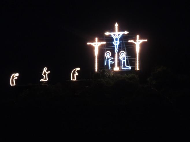 Manarola Vineyards at Night