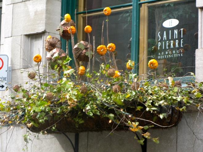 Quebec City Canada Flower Display