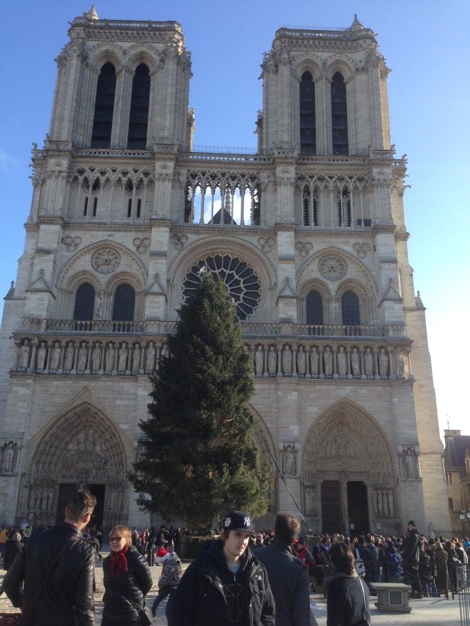 The Christmas Tree in Front of Notre Dame