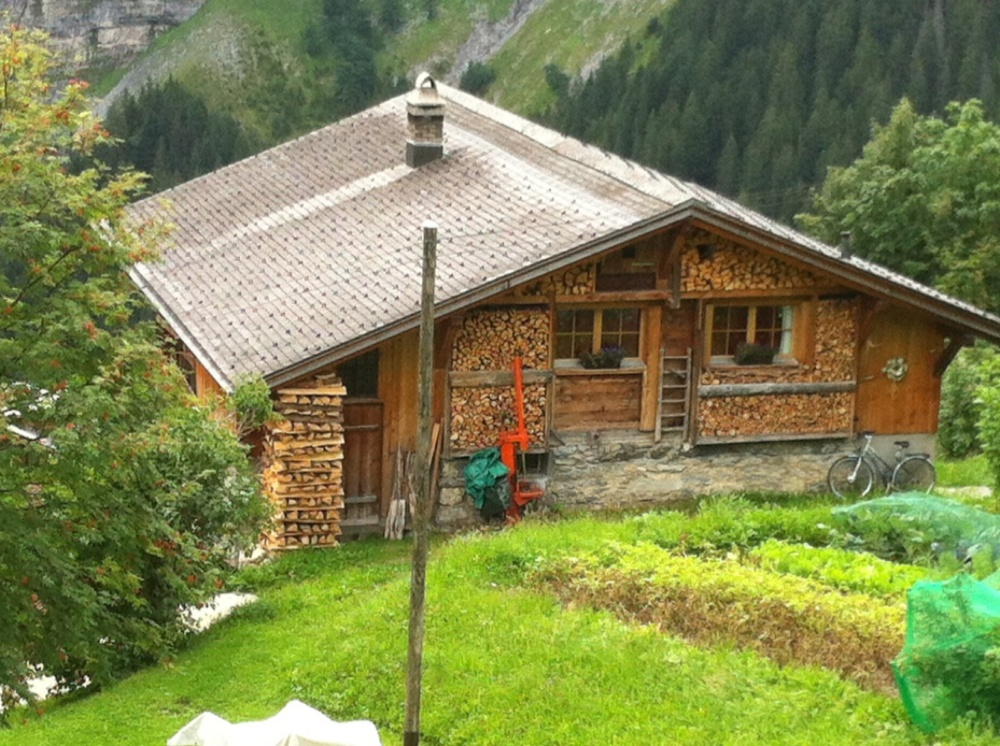 Gimmelwald House Surrounded by Cut Wood