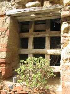 A Window in Montisi
