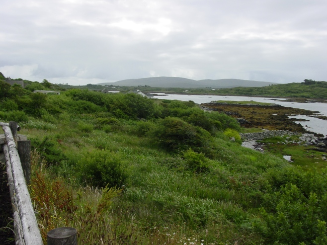 Peat Bog in Connemara