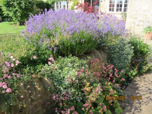 The Gardens of Bramley House B&B