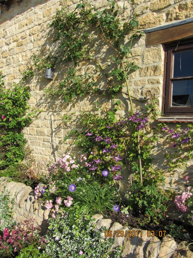 The Garden at the Bramley House