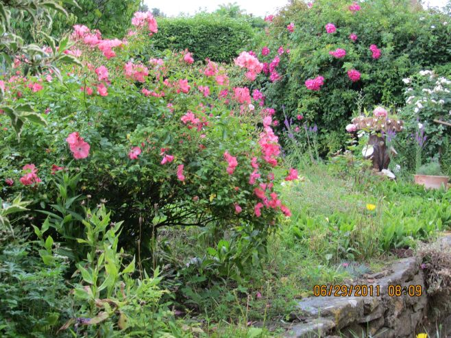 The Gardens of Ebrington, UK