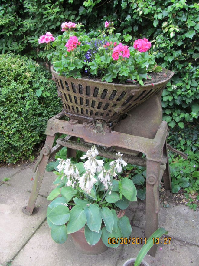 Flowers of Chipping Campden