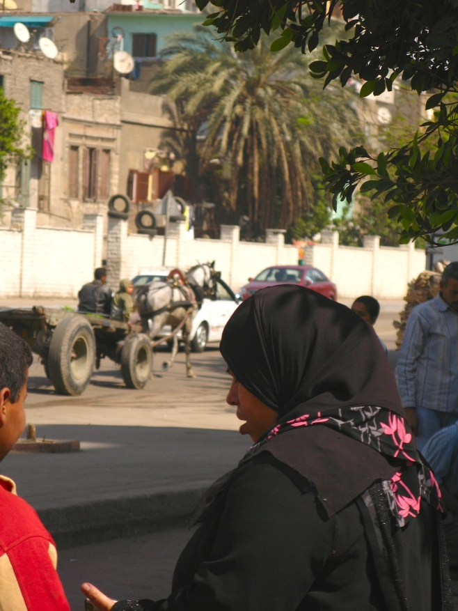 A Woman in Cairo