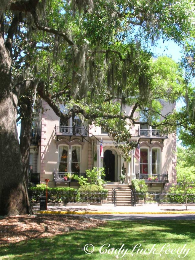 The Beauty of Savannah, Georgia