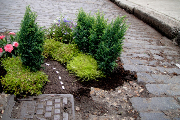 """The Work of UK Pothole Gardener Extraordinaire, Steve Wheen"""