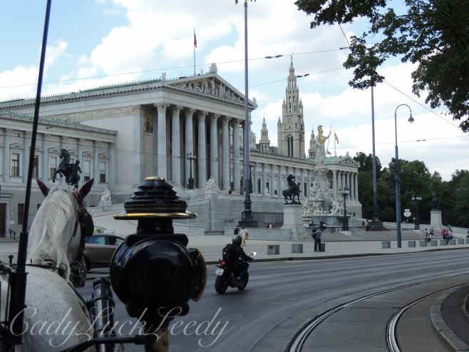 The Horse and Buggies, Vienna, Austria