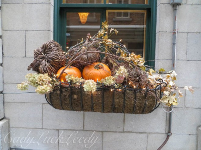 My Favorite Basket Planters, Quebec City, Canada