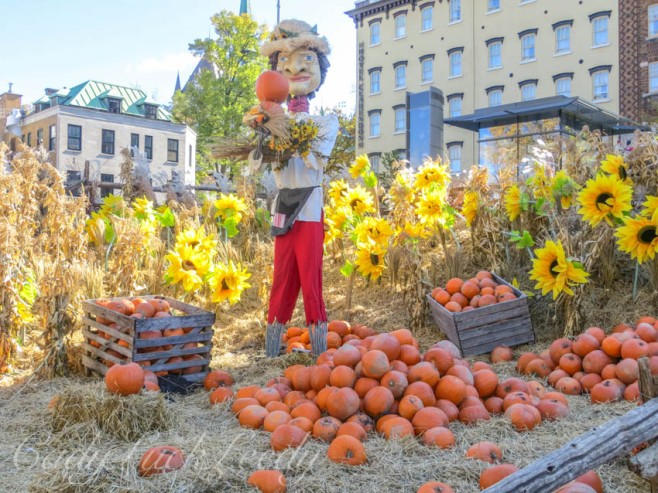 A Farmer in the Field, Quebec City, Canada