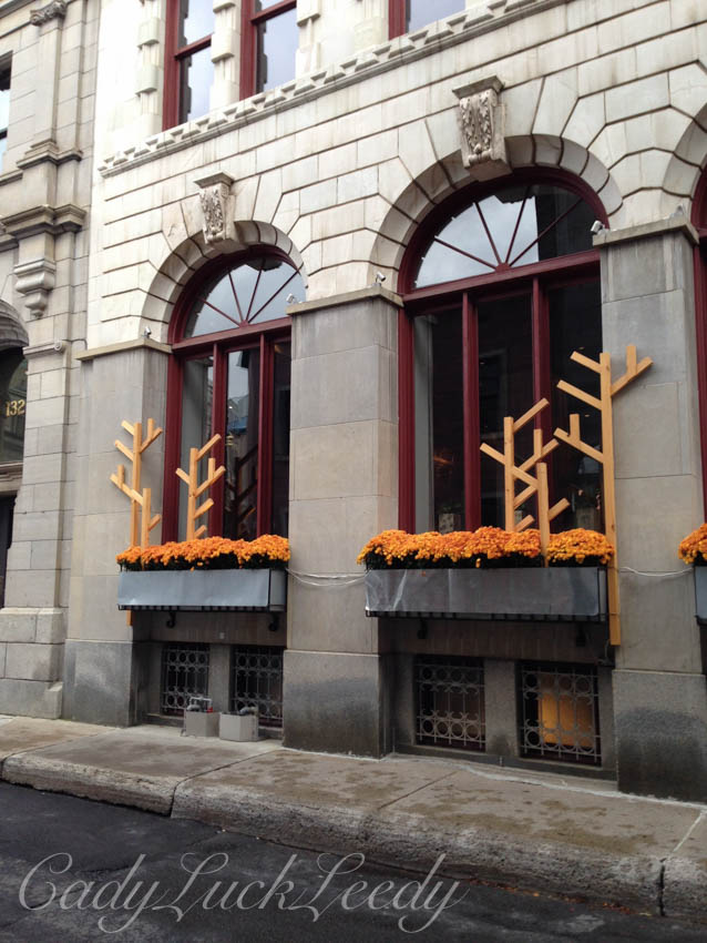 Fall Decorations at My Favorite Hotel, Hotel Saint Germaine
