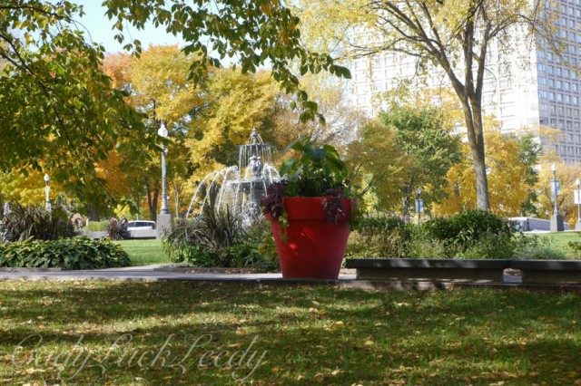 Giant Red Pots of Blooms in the Park! Quebec City, Canada