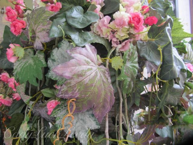 The Natural World, Flora in Bruges, Belgium