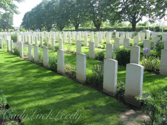 Rows and Rows of Graves, Flanders Fields