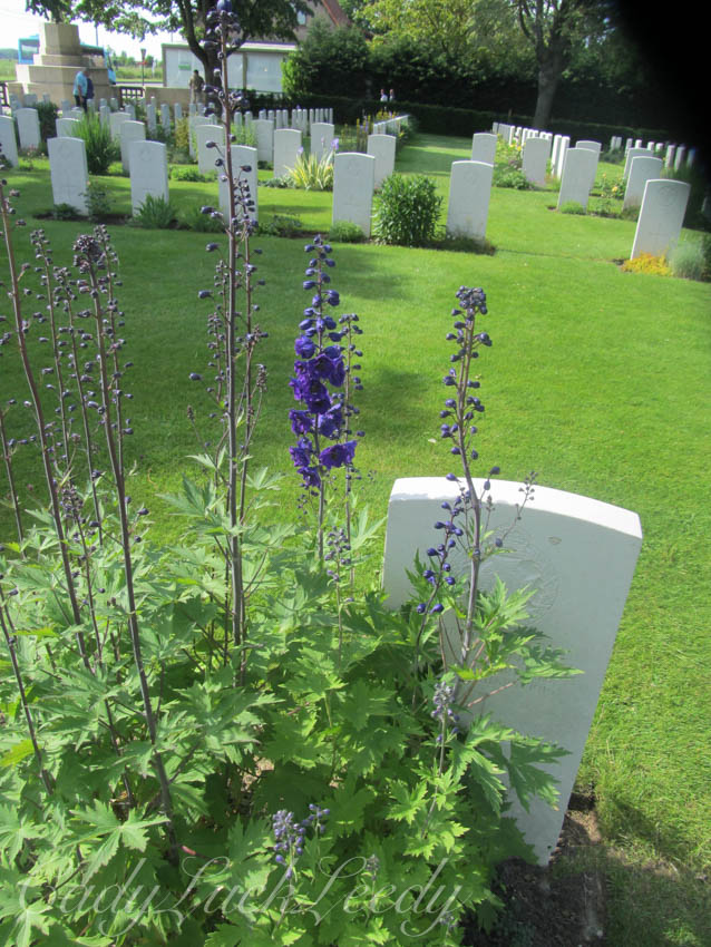 Photography 101: Solitary; A Solitary Grave in Flanders Fields, Ypres, Belgium