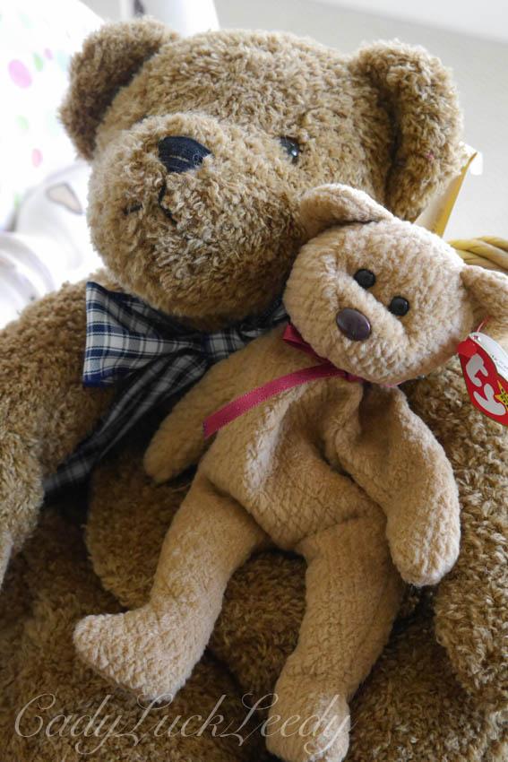 My Teddy Bear, Winnie
