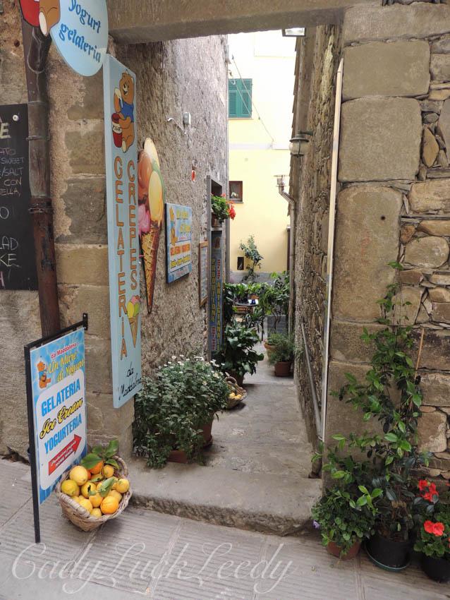 Lemons in Corneglia, Italy
