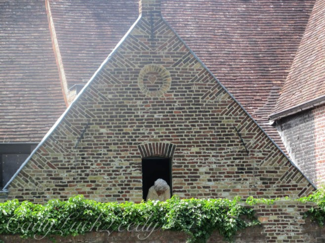 A Woman Calls to Us From Her Rooftop Sanctuary, Begijnhof, Brugge