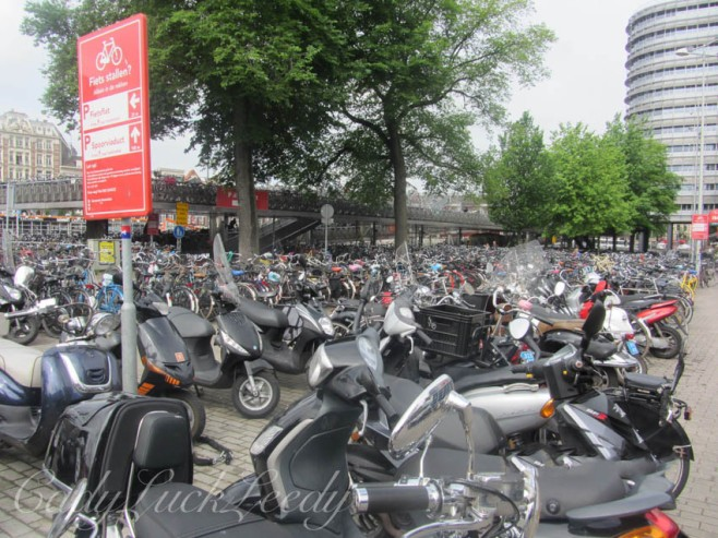 Yikes, Bikes, in Amsterdam!