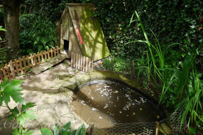 The Duck Cottage at Whites Cottage, Fletching, Uckfield