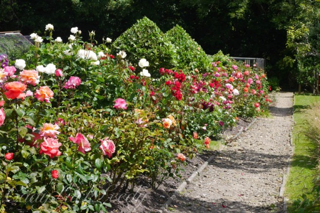 The Flower Garden at Luctons, Sussex