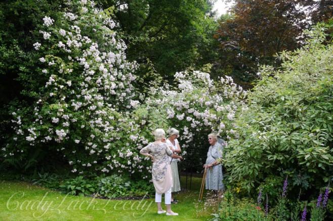 Real English Gardeners!