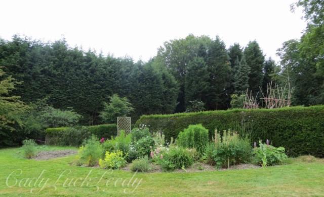 Entry into The Woodland Garden