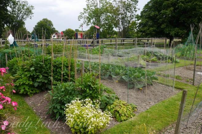 The Village Vegetable Garden, Warninglid, Sussex