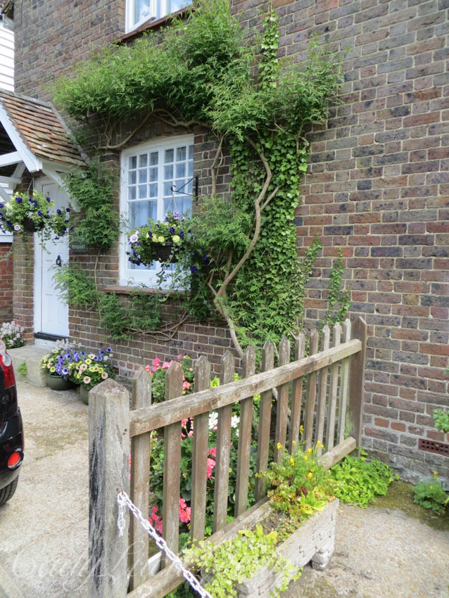 Beauty at the Whites Cottage, Fletching, Uckfield