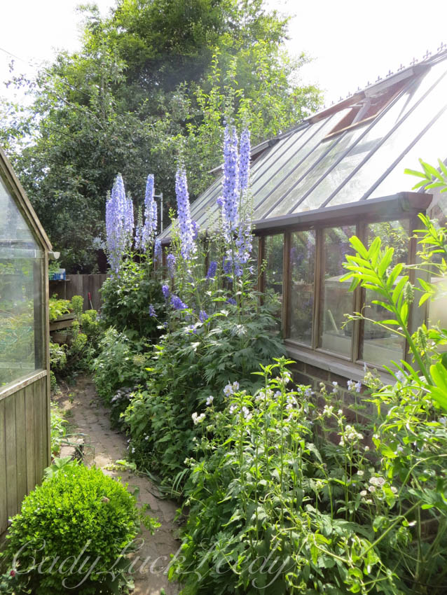 The Greenhouse at Whites Cottage, Fletching, Uckfield