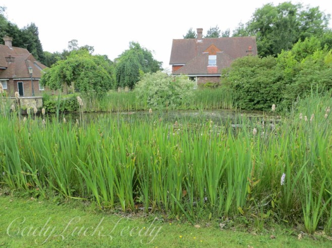 The Village Pond, Warninglid, Sussex