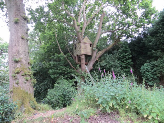 The TreeHouse in the Woodland Garden, Wealden House, Warninglid