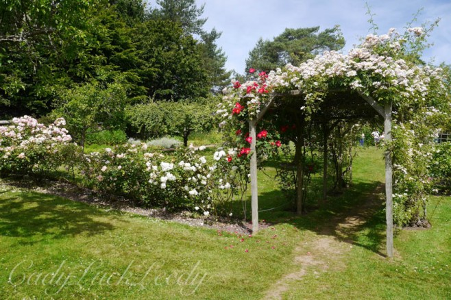 A Walk Through the Flower Gardens at Bateman's, Burwash, East Sussex, UK