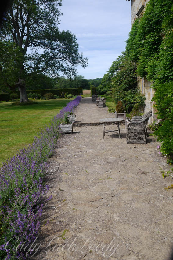 The Lavender Walk, Bateman's, Burwash, East Sussex, UK