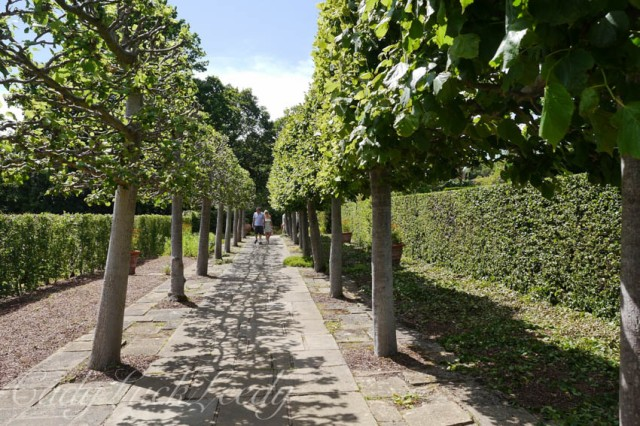 The Lime Walk, Sissinghurst, Kent, UK