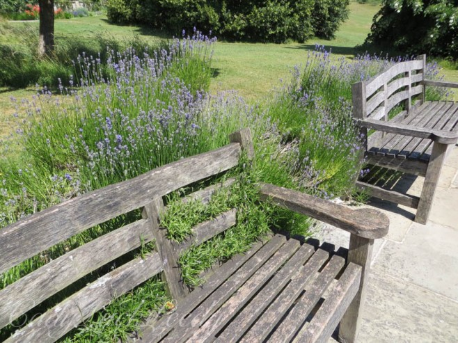 The Bench, Chartwell, Kent, UK