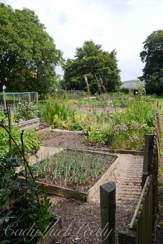 The Vegetable Garden at Monk's House, Rodmell, UK