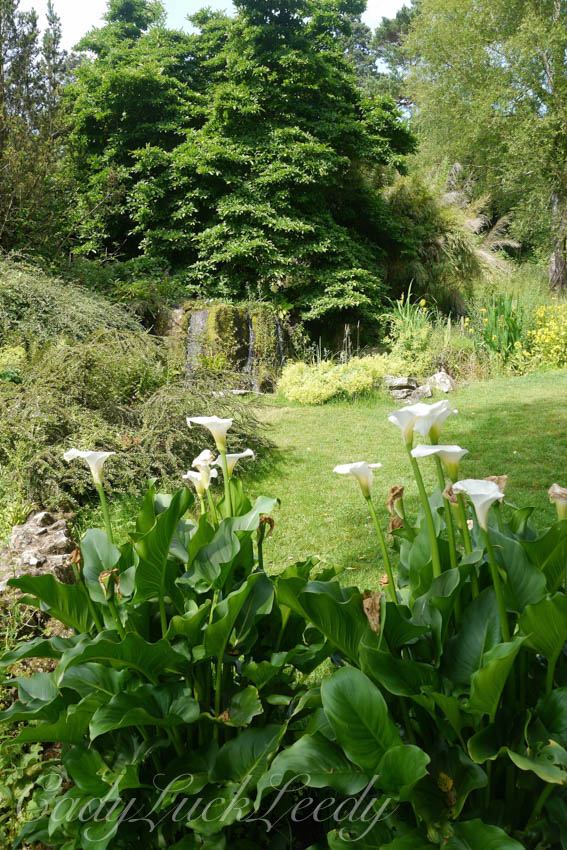 The Rock Garden and Fish Pond at Chartwell, Kent, UK