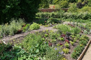 The Kitchen Garden, Chartwell, Kent, UK
