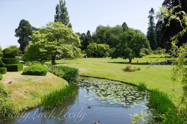 The Grounds and River Surrounding Hever Castle