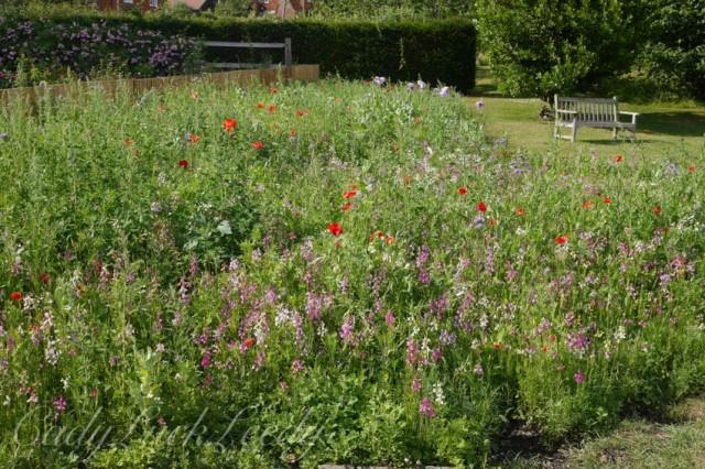 The Garden at Smallhythe Place, Tenterden, Kent, UK