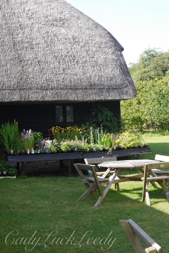 The Multiple Barns at Smallhythe Place, Tenterden, Kent, UK