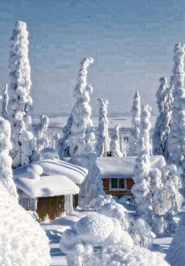 Very Snowy!!!