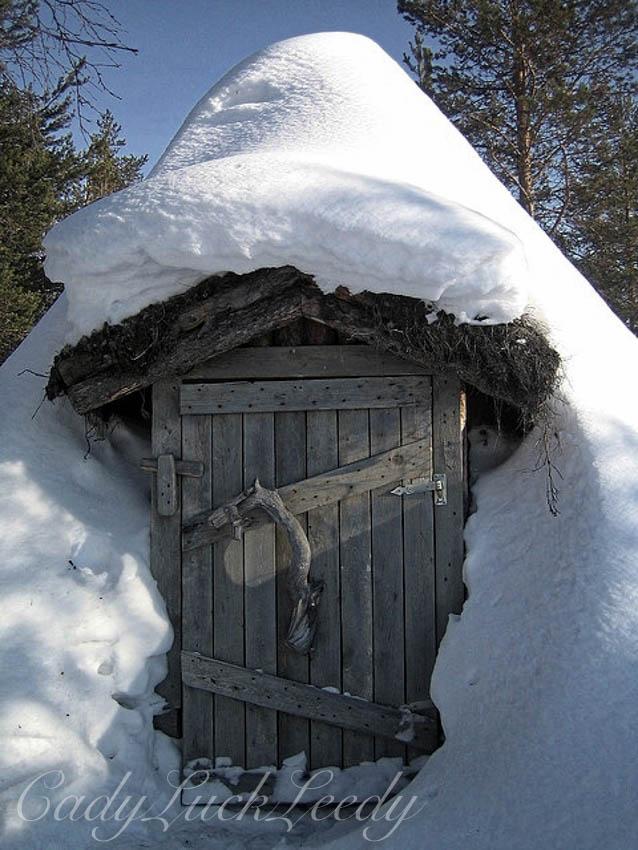 The Turf Hut