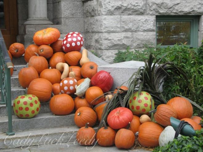 Quebec City, Canada Pumpkins