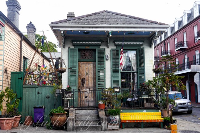 Cottage in New Orleans Surrounded With COLOR